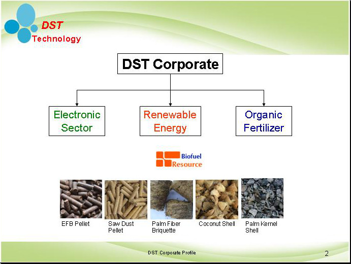 DST Corporate Organization